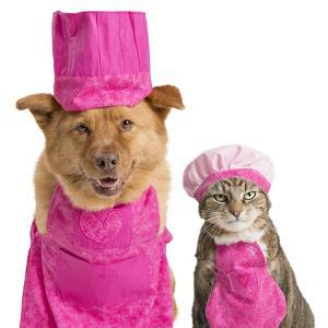 Dog and Cat Ready for Cooking by websubstance