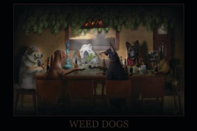 Weed Dogs - Pot Marijuana