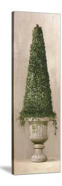 Florentine Topiary II by Welby