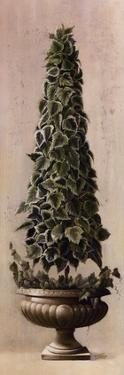 Florentine Topiary l by Welby