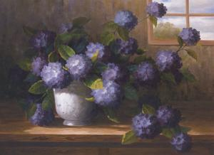Hydrangea Blossoms II by Welby