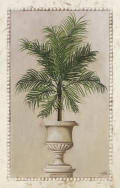 Palm Appeal II by Welby