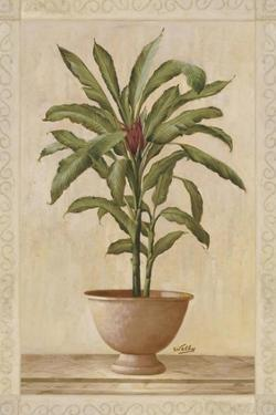 Potted Palm I by Welby