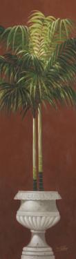 Potted Palm Red II by Welby