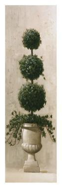 Three Ball Topiary by Welby