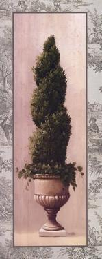 Topiary and Toile lII by Welby