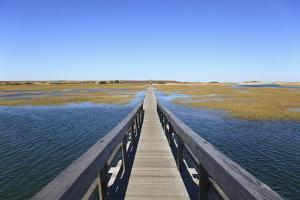 Boardwalk, Salt Marsh, Sandwich, Cape Cod, Massachusetts, New England, Usa by Wendy Connett