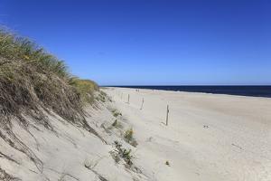 Nauset Light Beach, Cape Cod National Seashore, Orleans, Cape Cod, Massachusetts, New England, Usa by Wendy Connett