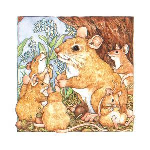A Rat Family Eating Nuts by Wendy Edelson