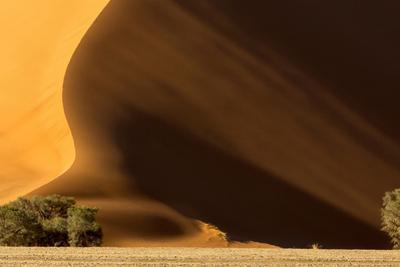 Namibia, Namib-Naukluft Park. Dune at Sunset