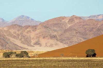 Namibia, Namib-Naukluft Park. Sand Dune and Contrasting Mountains