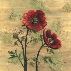 Anemone on Wood by Wendy Russell