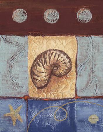 Aquamarine Nautilus by Wendy Russell