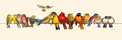 Bird Menagerie I