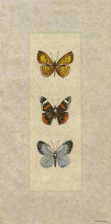 Butterfly Trio II by Wendy Russell