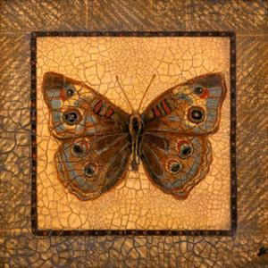 Crackled Butterfly - Buckeye by Wendy Russell