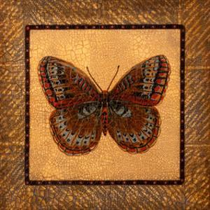 Crackled Butterfly - Fritillary by Wendy Russell