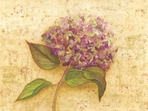 Hydrangea Love I by Wendy Russell