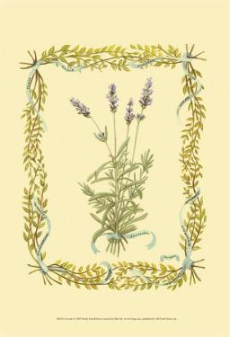 Lavender by Wendy Russell
