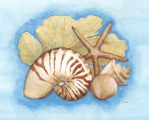 Seashells & Seafan I by Wendy Russell