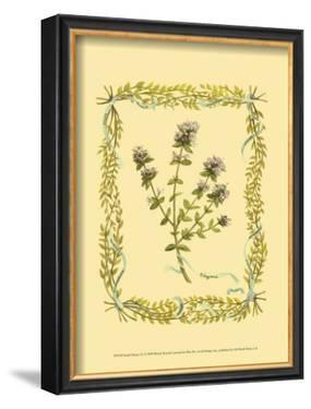 Thyme by Wendy Russell