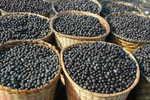 Acai Fruit Harvest And Market by werbeatelier_jbk