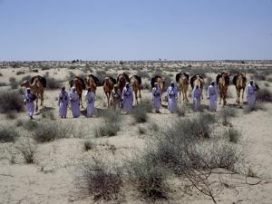 A party of Bedouin leading their camels in the desert by Werner Forman