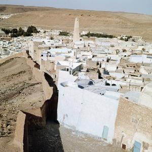 One of the oases of the Mzab valley by Werner Forman