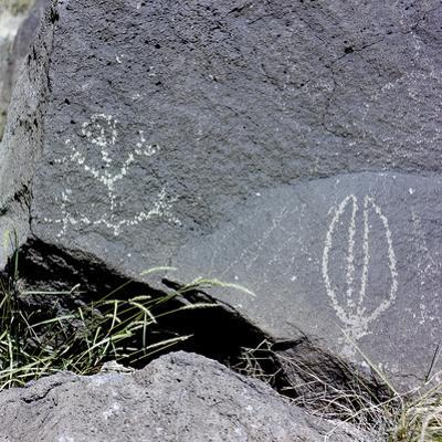 The Rio Grande petroglyphs, Native American, New Mexico, USA by Werner Forman