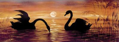 Swans In The Sunset by Werner