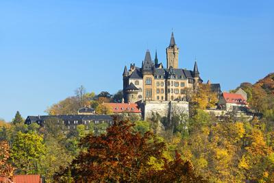 https://imgc.allpostersimages.com/img/posters/wernigerode-castle-in-autumn-wernigerode-saxony-anhalt-germany_u-L-Q11YMQM0.jpg?p=0