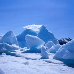 Icebergs in Alsek Lake, Glacier Bay National Park & Preserve, Alaska, USA by Wes Walker