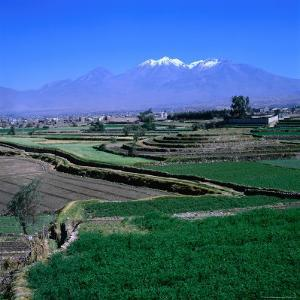 Terraced Fields at Arequipa with the Distant Volcano Chachani (The Beloved), Arequipa, Peru by Wes Walker