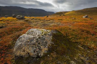 https://imgc.allpostersimages.com/img/posters/west-fjords-iceland-polar-regions_u-L-PQ8UMH0.jpg?p=0