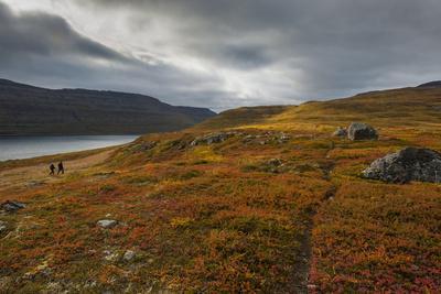 https://imgc.allpostersimages.com/img/posters/west-fjords-iceland-polar-regions_u-L-PQ8UMT0.jpg?p=0