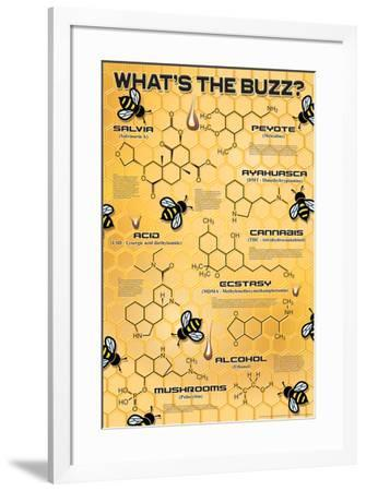 What's the Buzz?--Framed Poster
