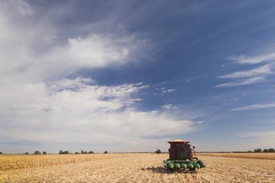 https://imgc.allpostersimages.com/img/posters/wheat-field-and-combine-north-platte-nebraska-usa_u-L-PN6X9I0.jpg?p=0