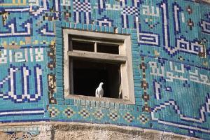 White Dove of Peace, Mosque Window