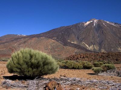 Mount Teide, Parque Nacional De Las Canadas Del Teide Tenerife, Canary Islands