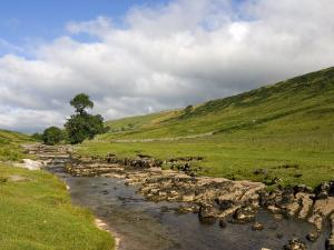 River Wharfe, Upper Wharfedale, Yorkshire Dales National Park, North Yorkshire, England, UK by White Gary