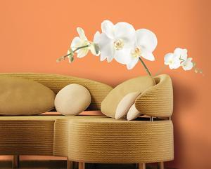 White Orchid Peel & Stick Wall Decals