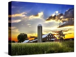 Silo, Barn, and Cornfield of an American Farm Backlit at Sunset by White & Petteway