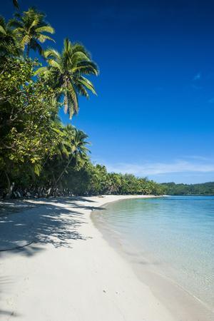 https://imgc.allpostersimages.com/img/posters/white-sand-beach-and-turquoise-water-at-the-nanuya-lailai-island-the-blue-lagoon-yasawa-fiji_u-L-Q12T0H70.jpg?p=0