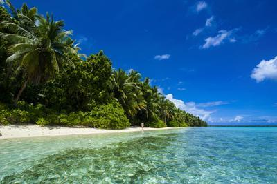 https://imgc.allpostersimages.com/img/posters/white-sand-beach-in-turquoise-water-in-the-ant-atoll-pohnpei-micronesia_u-L-Q12T7VV0.jpg?p=0
