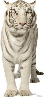 White Tiger Lifesize Standup