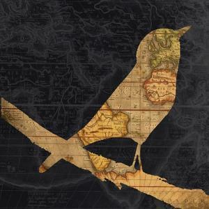 Song Bird by Whoartnow