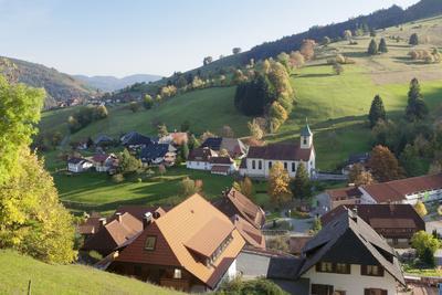 https://imgc.allpostersimages.com/img/posters/wieden-black-forest-baden-wurttemberg-germany_u-L-Q1EY49S0.jpg?artPerspective=n