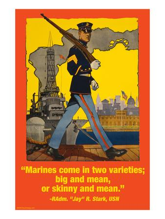 Marines Come in Two Varieties