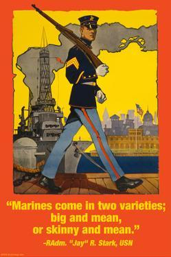 Marines Come in Two Varieties by Wilbur Pierce