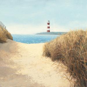 Beach Path Square by Wild Apple Portfolio